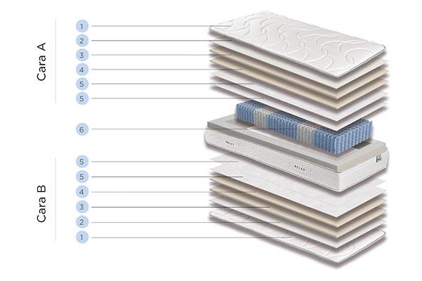 componentes zeta