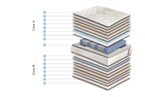 magnum firm componentes