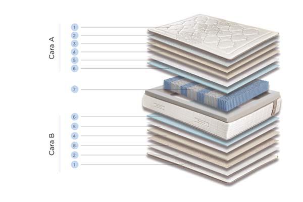 magnum medium componentes